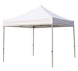 10x10 Freestanding Canopy